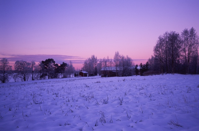 Polar night, polar twilight