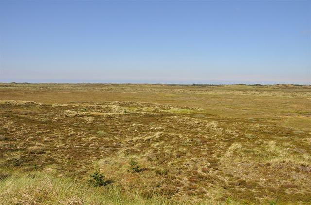 Lille Hav Nationalpark Thy