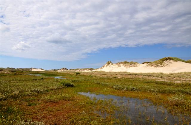 Raabjerg Mile photo