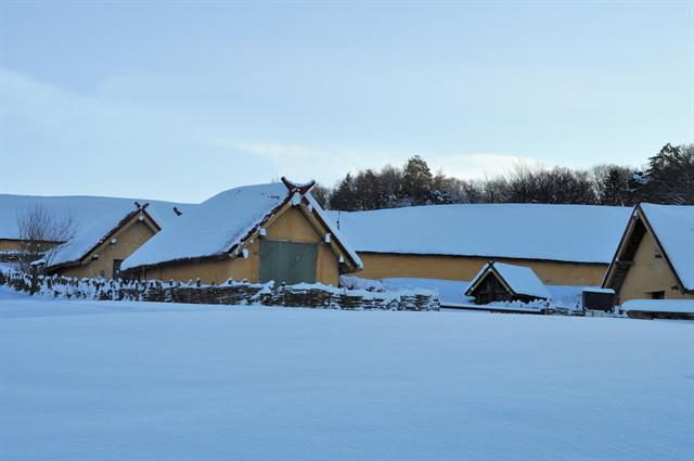 Viking Farmstead photo