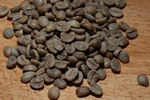 Coffee (Coffea sp.)